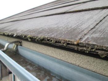 雨樋掃除,経年劣化,スレート屋根