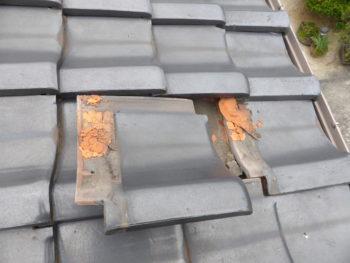 雨漏り修理,下地補強,瓦交換