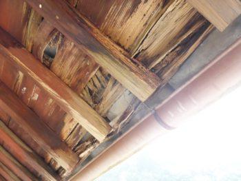 軒天下地,耐震工法,風災補償