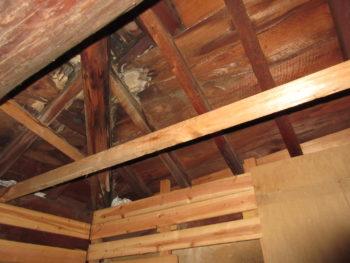 雨漏り箇所特定,下地板腐食,藤井製瓦工業