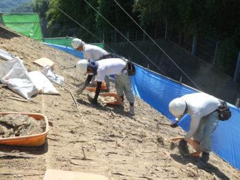台風対策,雨漏り原因,福山市