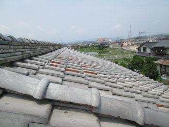 大屋根の瓦,棟瓦のズレ,瓦の苔