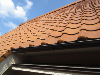 大屋根,屋根調査,梯子から目視