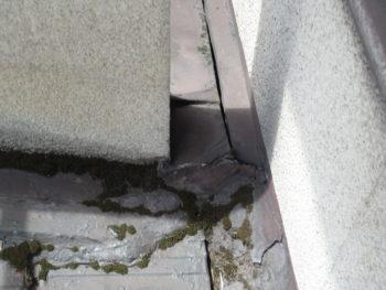 屋根のコケ,排水困難,瓦の劣化