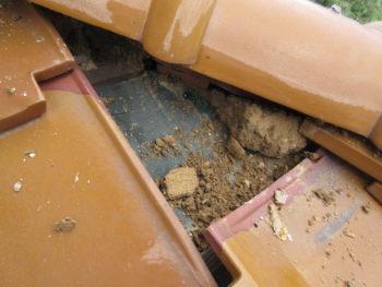 雨漏り原因,屋根調査,点検