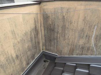 外壁劣化,塗料の剥がれ,外壁のカビ