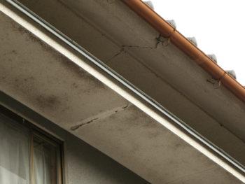 外壁のカビ,変色,雨漏り