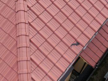瓦補修,屋根調査,害獣対策